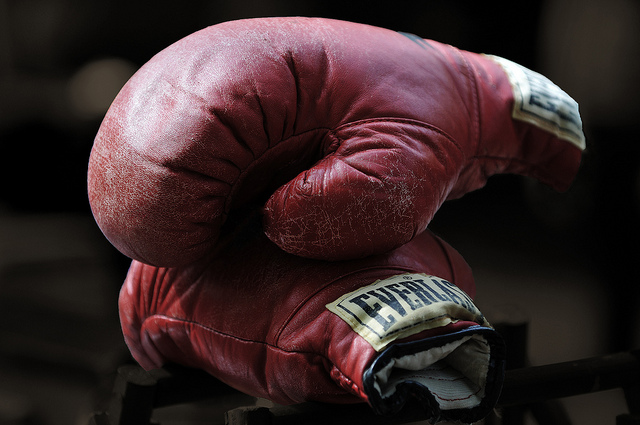 everlast glove